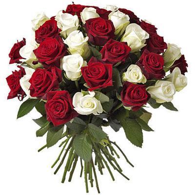 Название: rose.jpg Просмотров: 216  Размер: 30.1 Кб